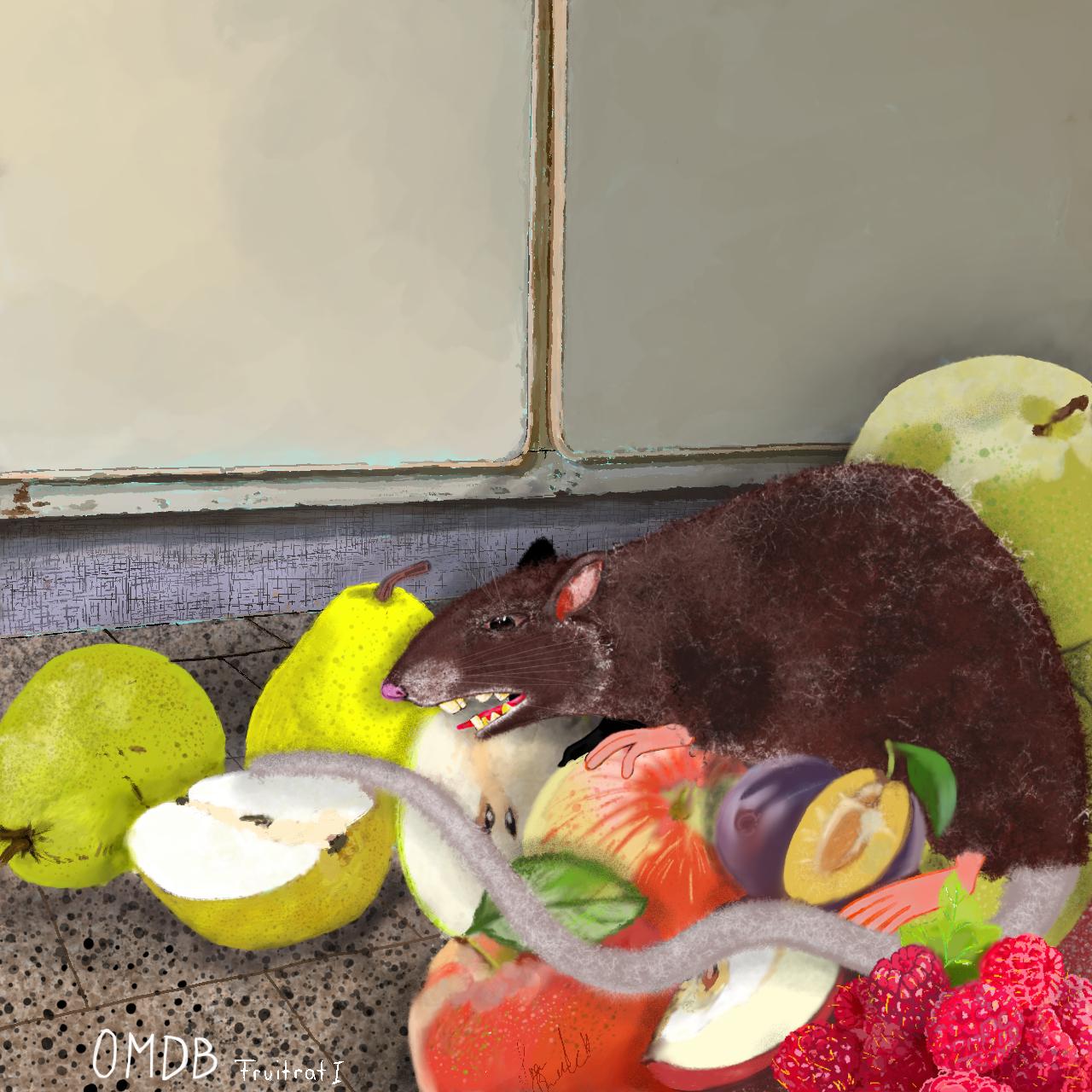 fruitrat 1